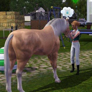 Sims01-04.jpg