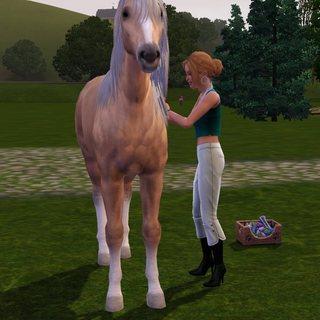 Sims01-05.jpg