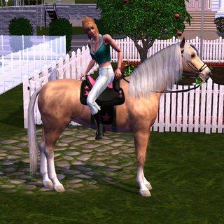 Sims01-06.jpg